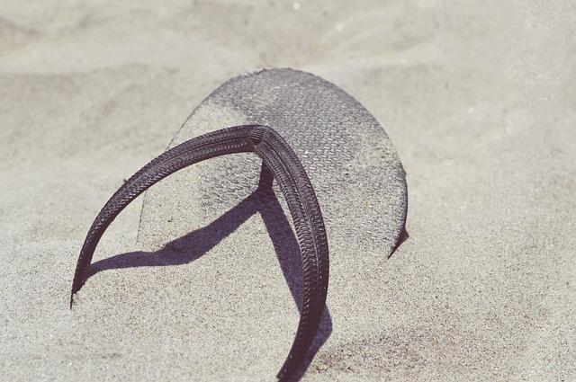 žabka v písku